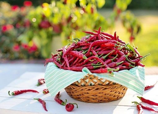 scala di piccantezza del peperoncino